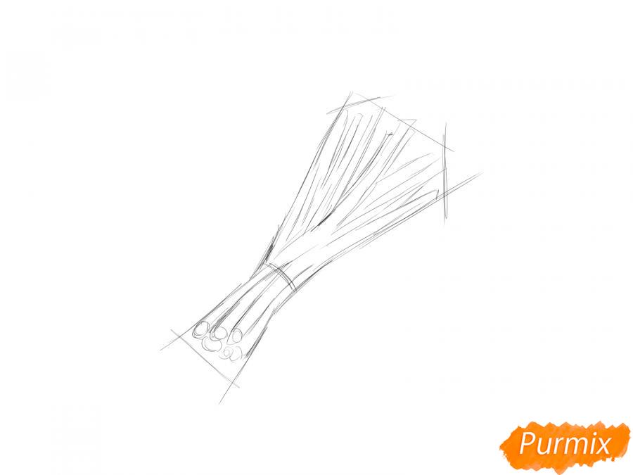 Рисуем пучок зеленого лука - шаг 3