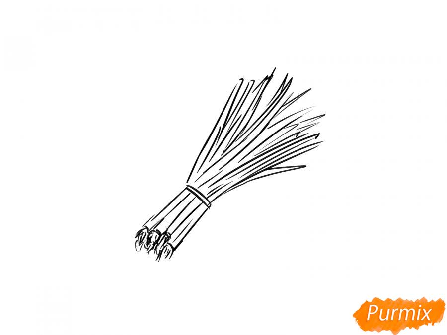 Рисуем пучок зеленого лука - шаг 5