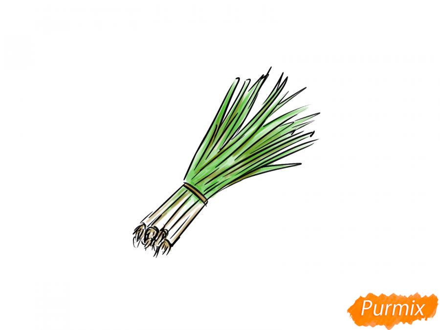 Рисуем пучок зеленого лука - шаг 7