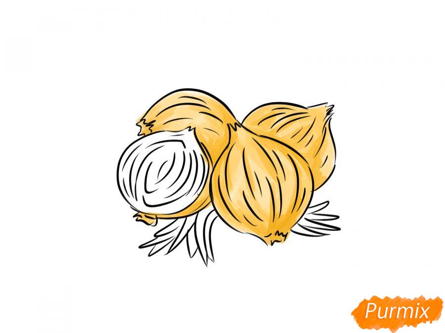 Рисуем репчатый лук - шаг 5
