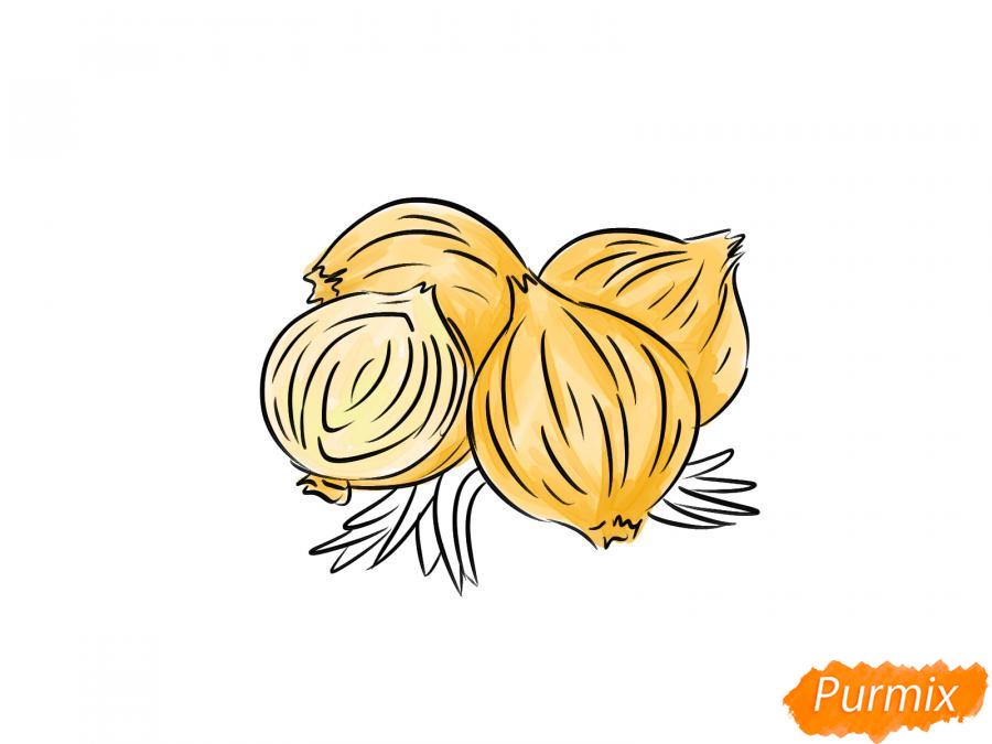 Рисуем репчатый лук - шаг 6