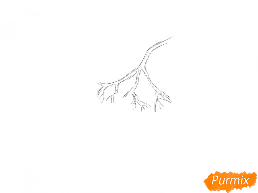 Рисуем рябину карандашами - шаг 2