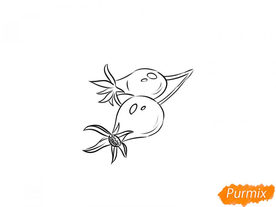 Рисуем шиповник карандашами - шаг 5