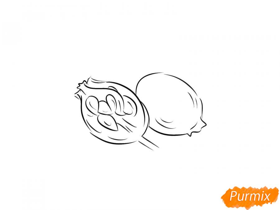 Рисуем шиповник в разрезе - шаг 4