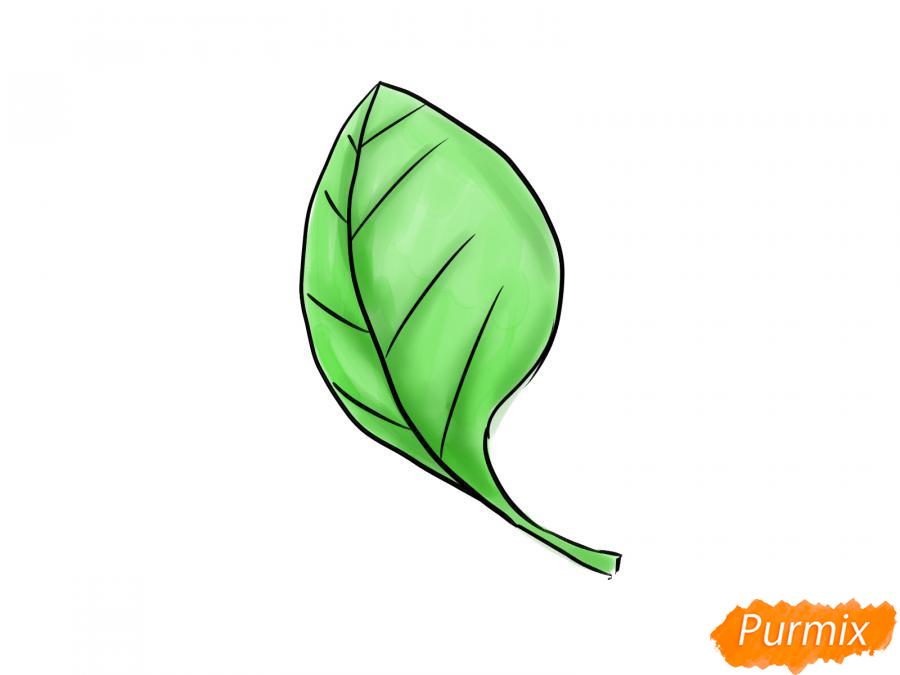 Рисуем шпинат - шаг 7