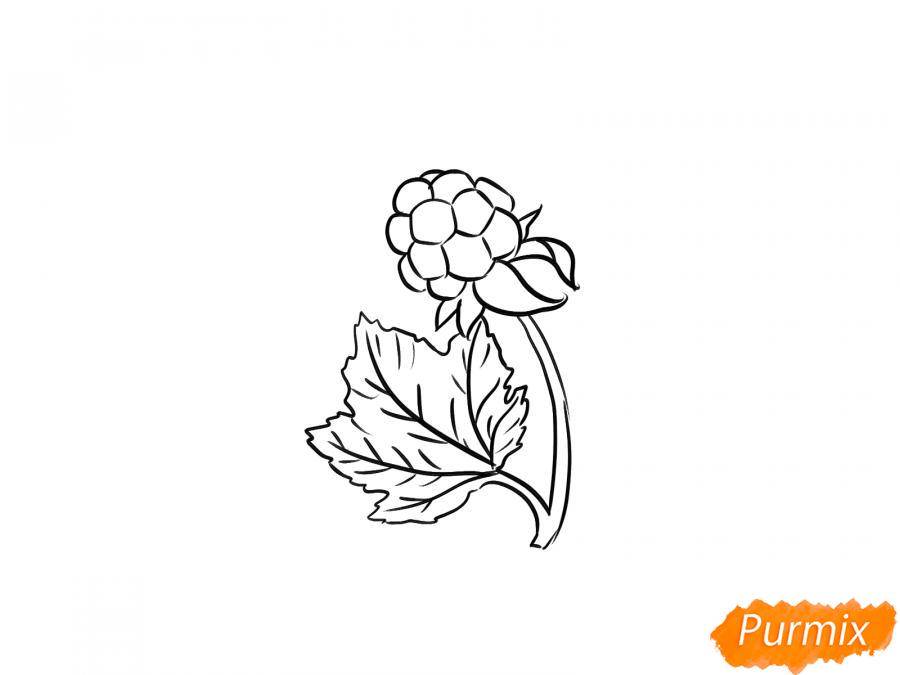 Рисуем веточку с морошкой - шаг 6