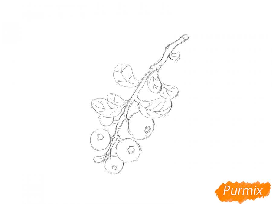Рисуем веточку с ягодами брусники - шаг 4