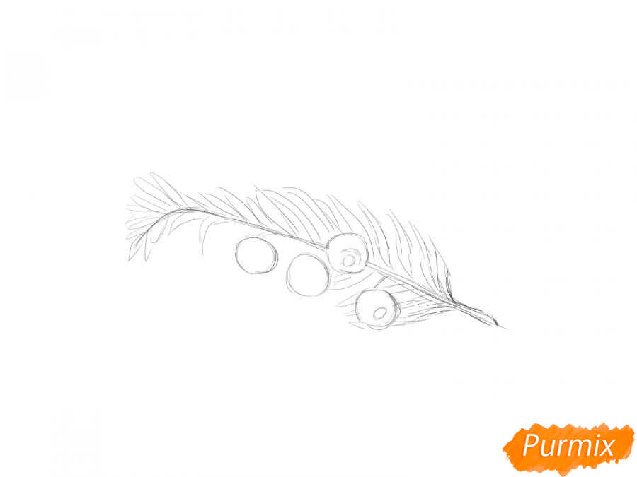 Рисуем ядовитые ягоды карандашами - шаг 4