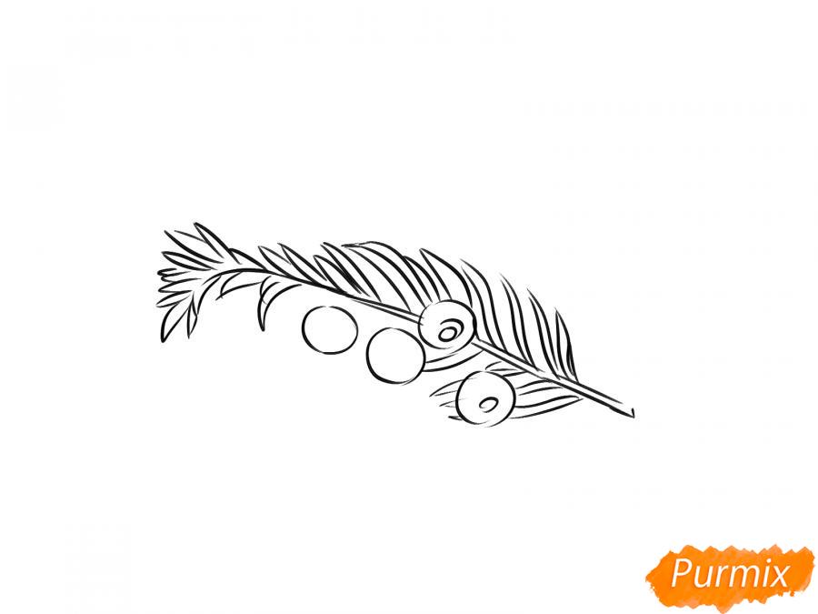 Рисуем ядовитые ягоды карандашами - шаг 5
