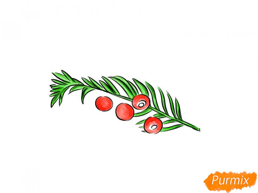 Рисуем ядовитые ягоды карандашами - шаг 7