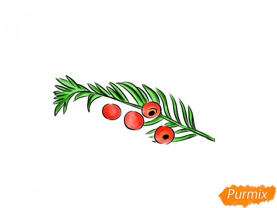 Рисуем ядовитые ягоды карандашами - шаг 8