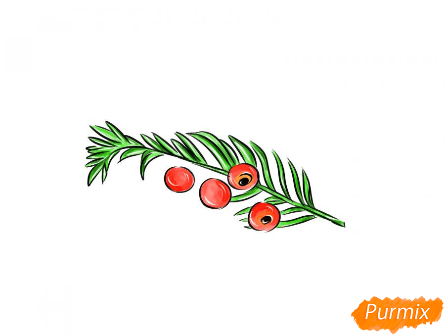 Рисуем ядовитые ягоды карандашами - шаг 9