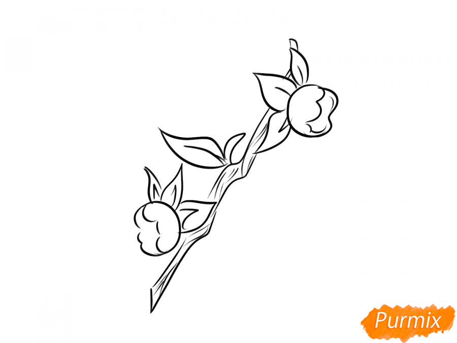 Рисуем ягоду белладонну - шаг 5