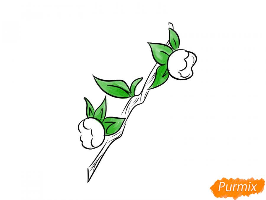 Рисуем ягоду белладонну - шаг 6