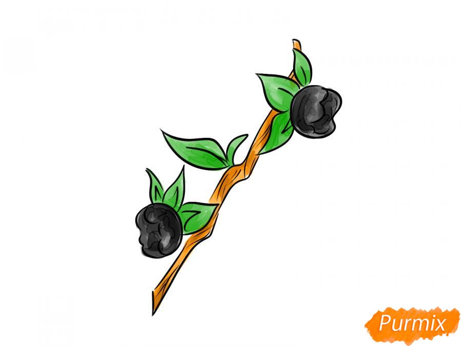 Рисуем ягоду белладонну - шаг 8