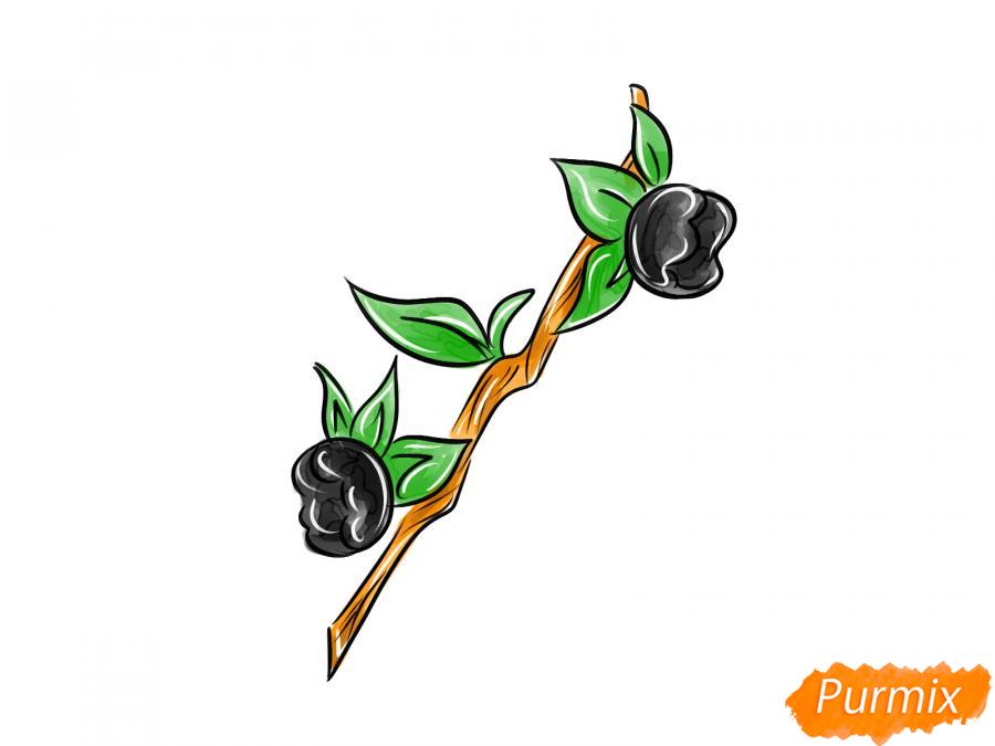 Рисуем ягоду белладонну - шаг 9