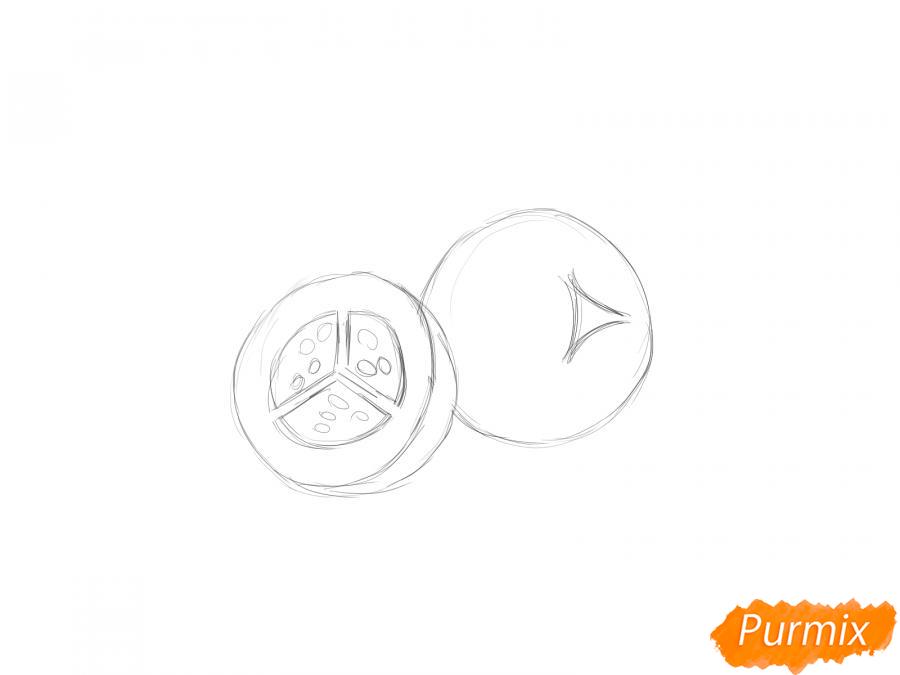 Рисуем ягоду можжевельника в разрезе - шаг 4