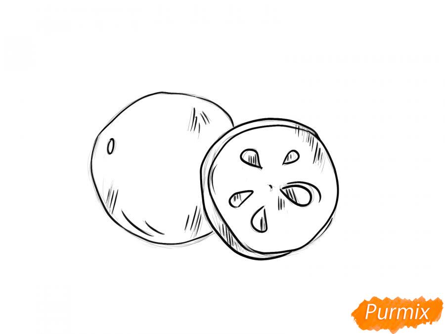 Рисуем ягоду рябины в разрезе - шаг 4