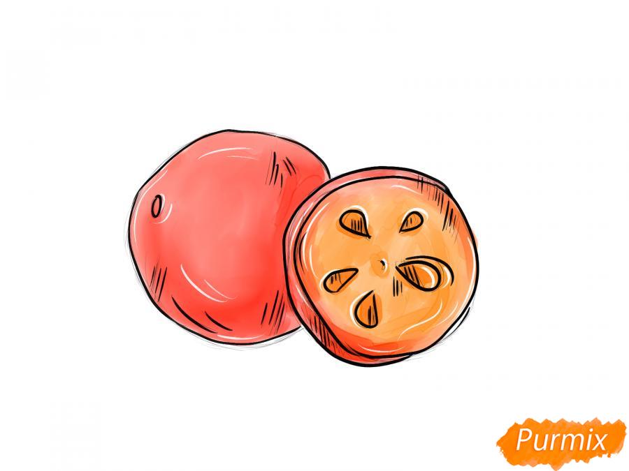 Рисуем ягоду рябины в разрезе - шаг 8