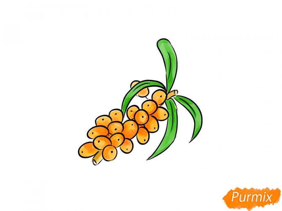 Рисуем ягоды облепихи на ветке - шаг 7