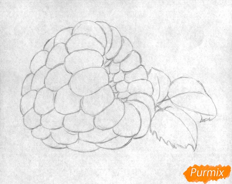 Рисуем малину карандашами - шаг 1