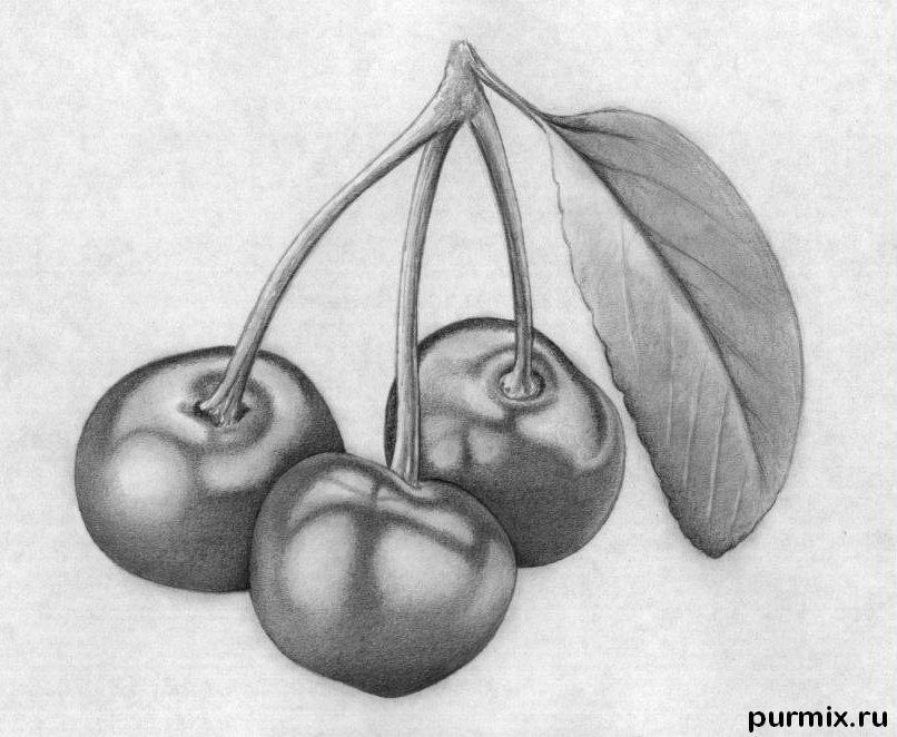 Рисуем вишни карандашами - шаг 10