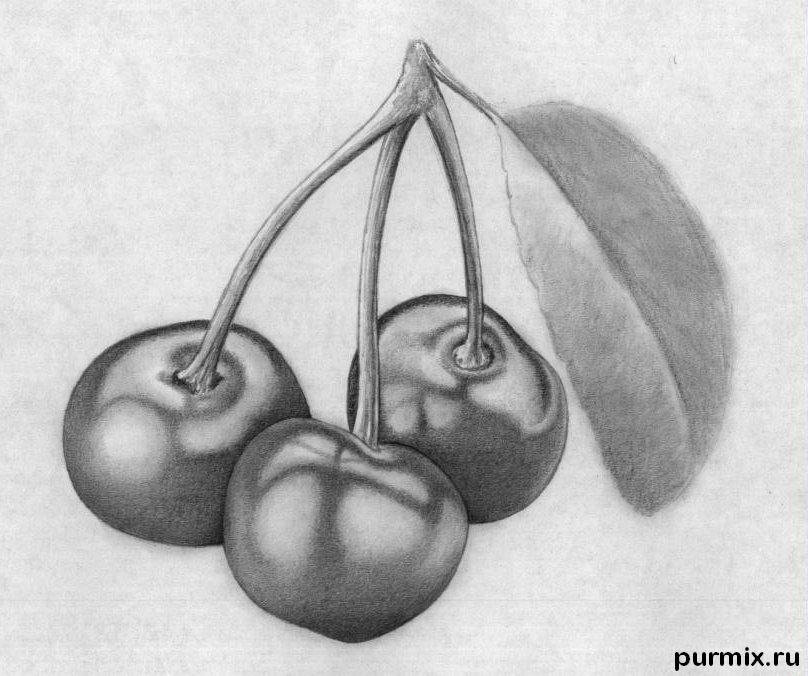 Рисуем вишни карандашами - шаг 9
