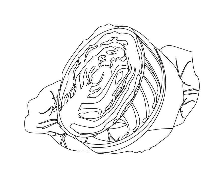 Рисунки капусты для срисовки - шаг 2