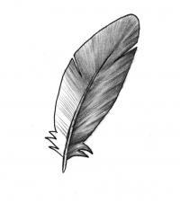 Как рисовать перо карандашом