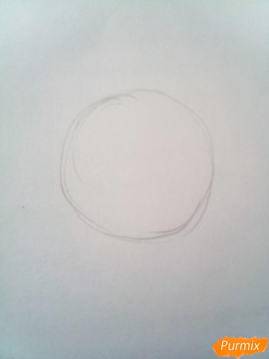 Рисуем черепаху Тортиллу цветными  карандашами - шаг 1