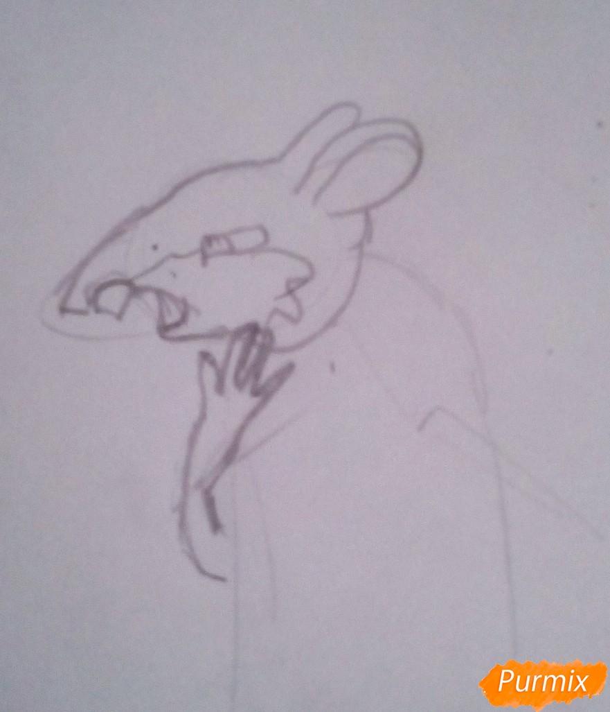 Рисуем крысу Шушера из Буратино карандашами - шаг 3