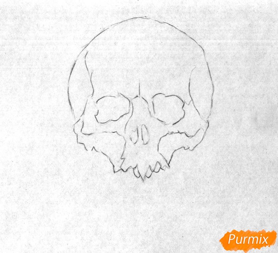 Рисуем череп с розами - шаг 1