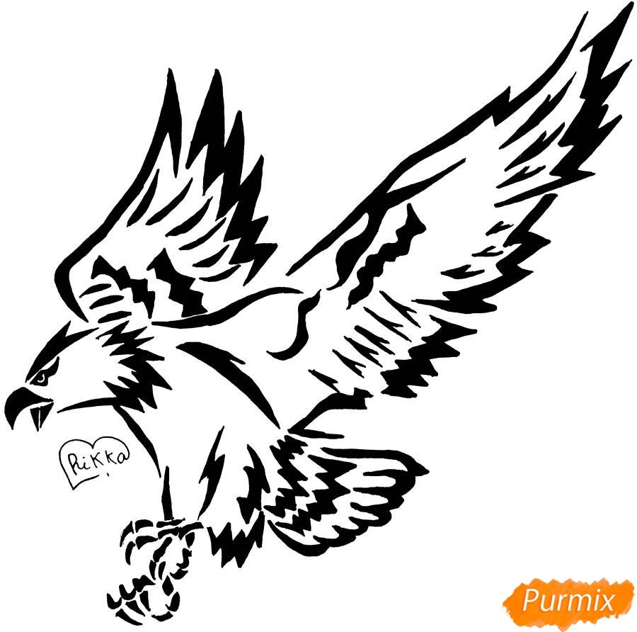 Рисуем коршуна в стиле тату - шаг 12