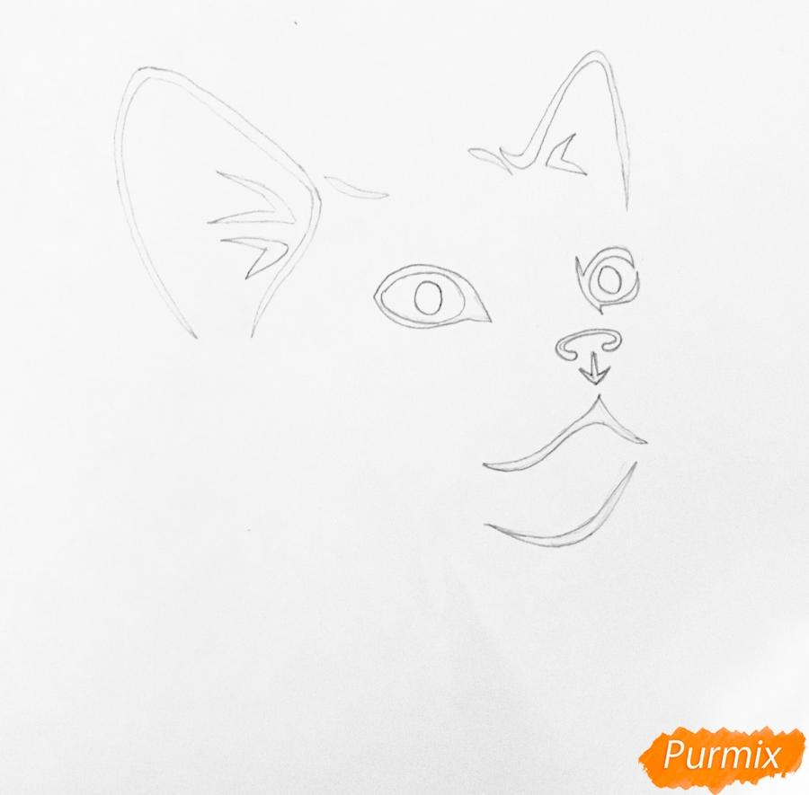 Рисуем портрет кошечки в стиле тату - шаг 2