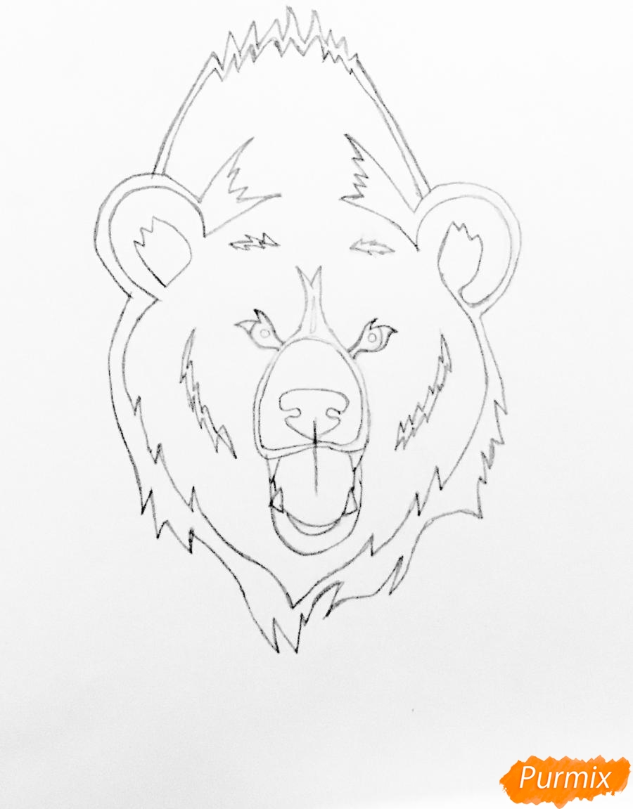 Рисуем медведя в стиле тату - шаг 4