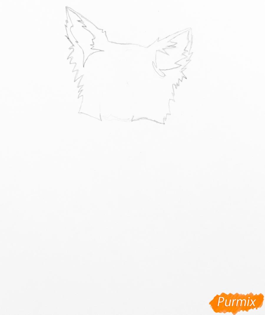 Рисуем тату собаку - шаг 1
