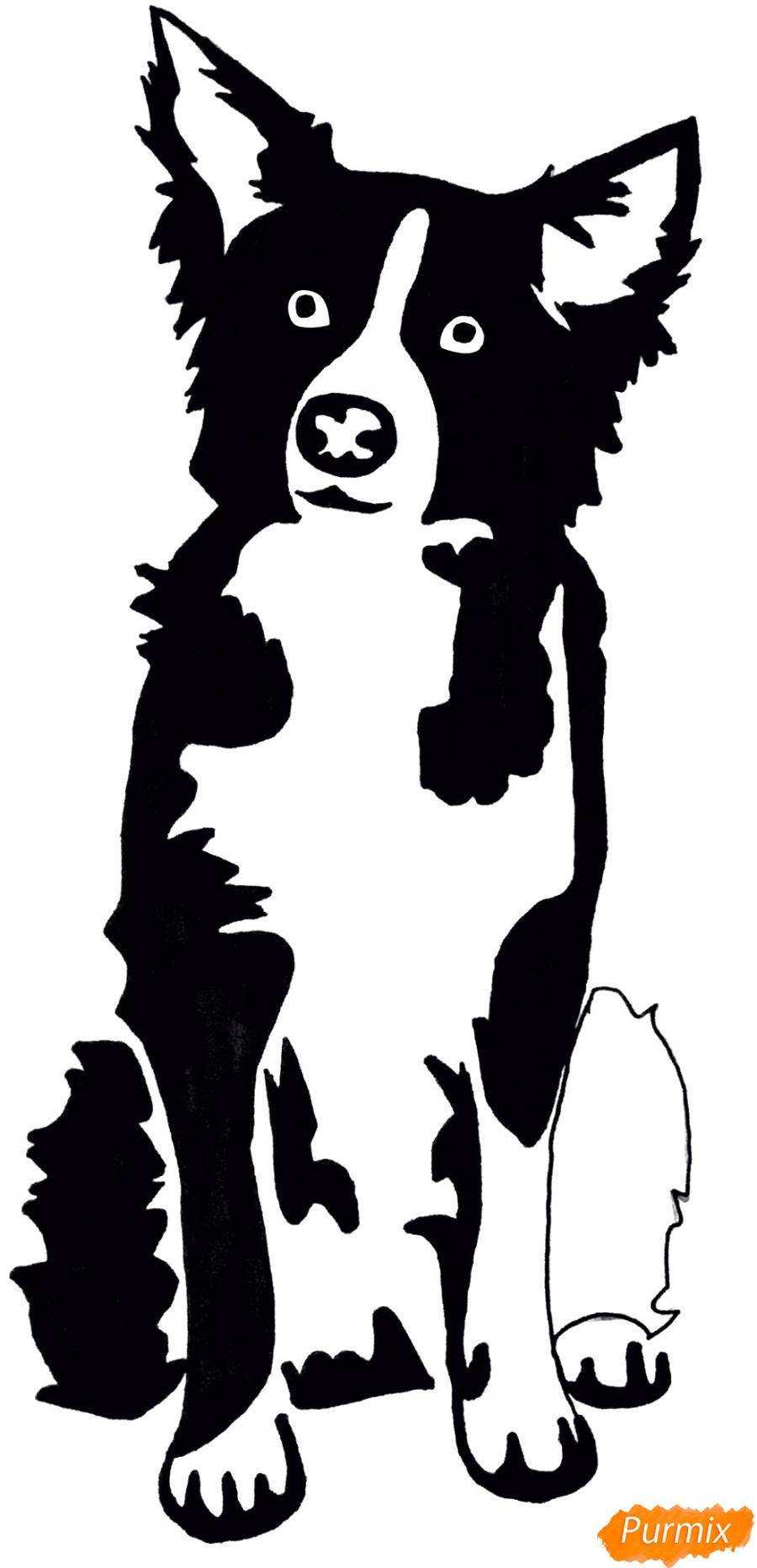 Рисуем тату собаку - шаг 10