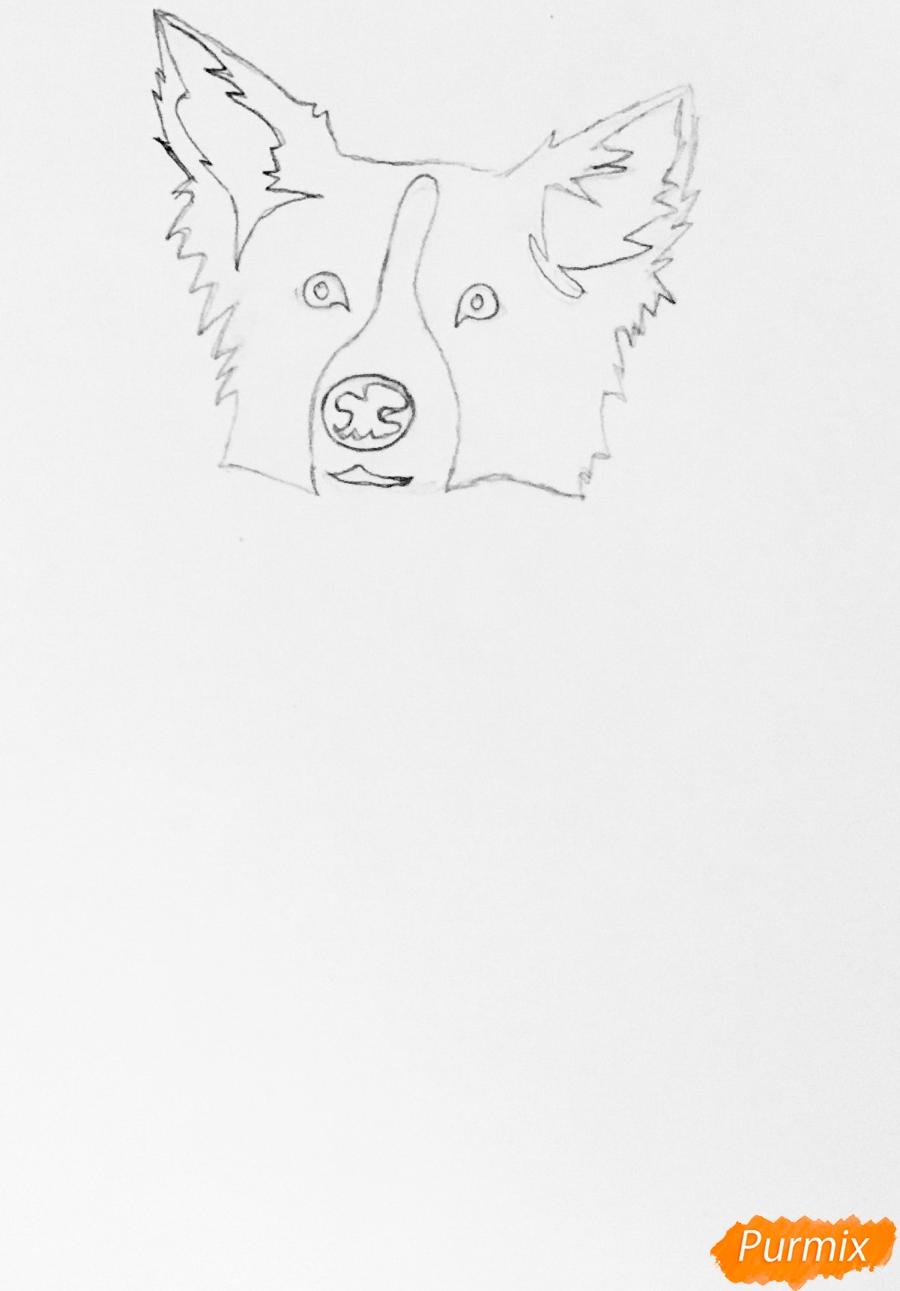 Рисуем тату собаку - шаг 2