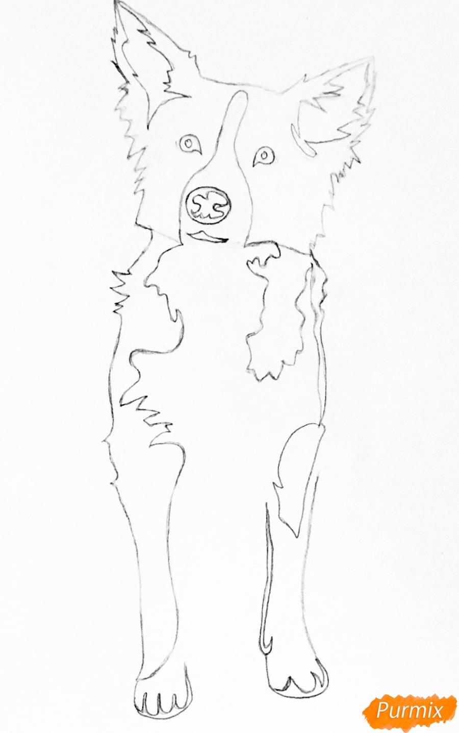 Рисуем тату собаку - шаг 4