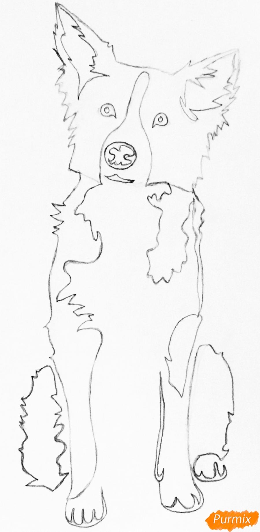 Рисуем тату собаку - шаг 5
