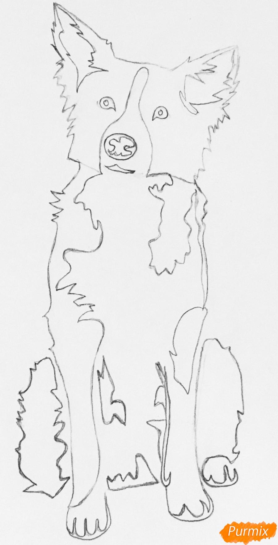 Рисуем тату собаку - шаг 6