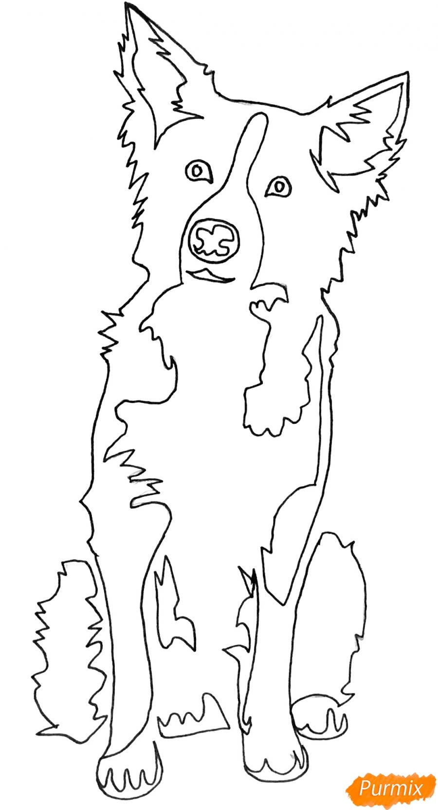 Рисуем тату собаку - шаг 7