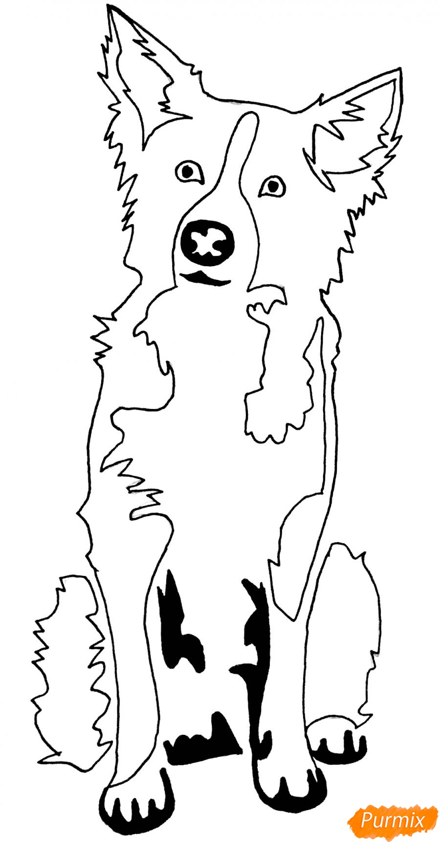 Рисуем тату собаку - шаг 8