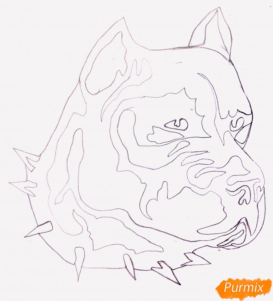 Рисуем стаффордширского терьера в стиле тату - шаг 4