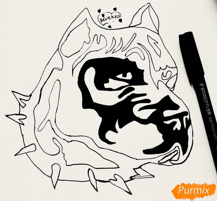 Рисуем стаффордширского терьера в стиле тату - шаг 6