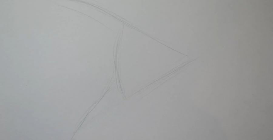 Рисуем рыбу Скалярию в стиле тату - шаг 1