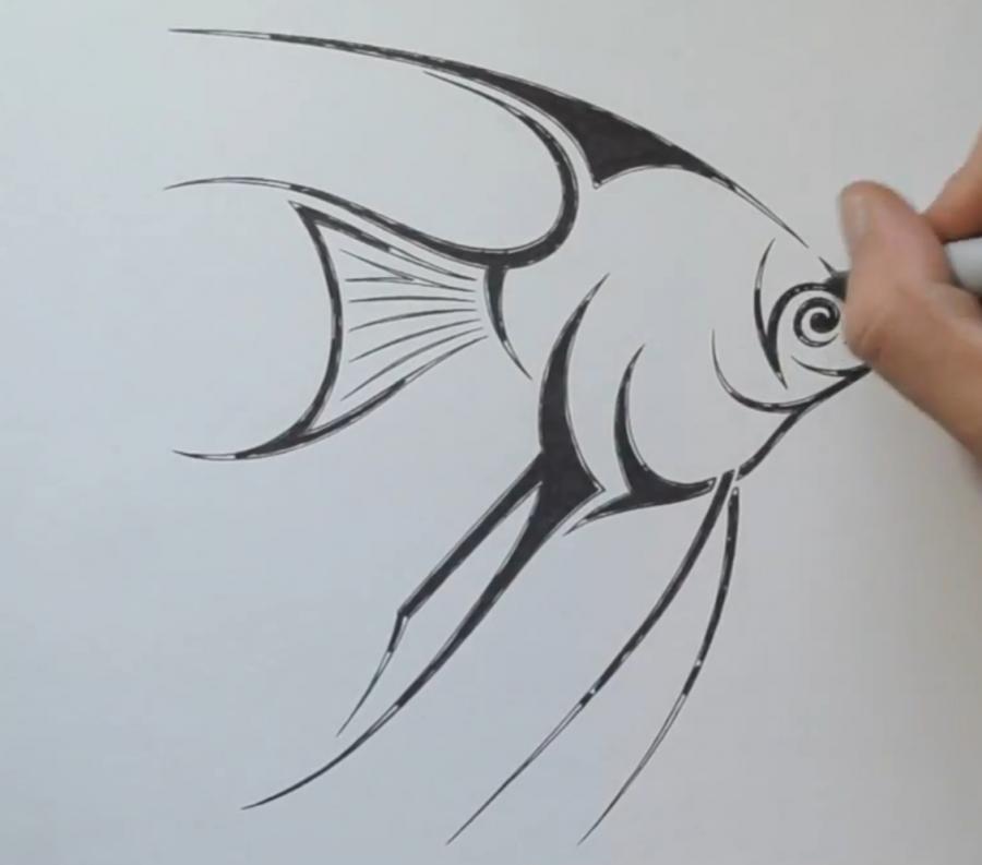 Рисуем рыбу Скалярию в стиле тату - шаг 5