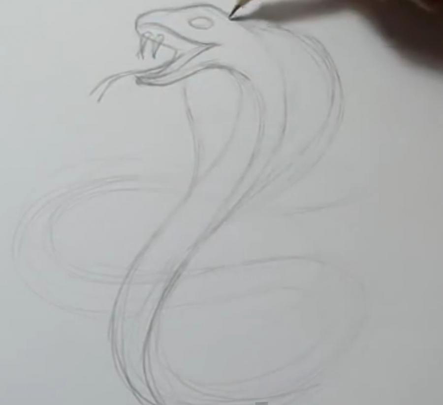 Рисуем татуировку змеи  на бумаге - шаг 2