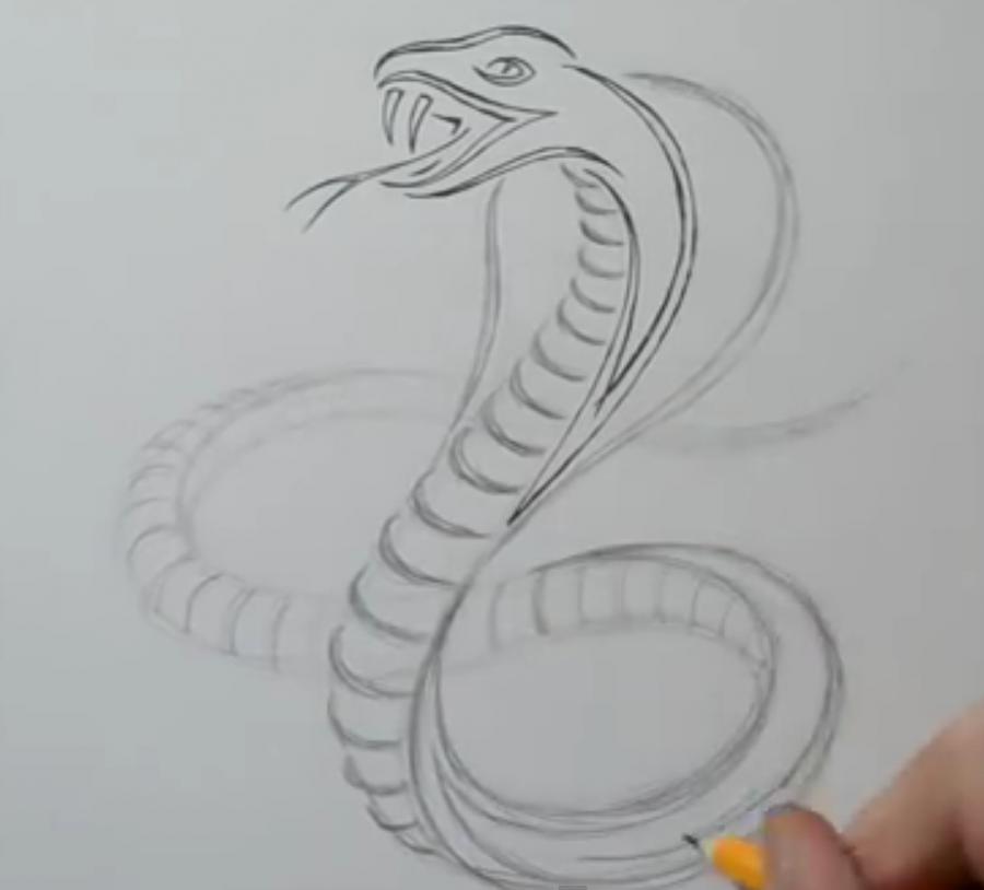 Рисуем татуировку змеи  на бумаге - шаг 4