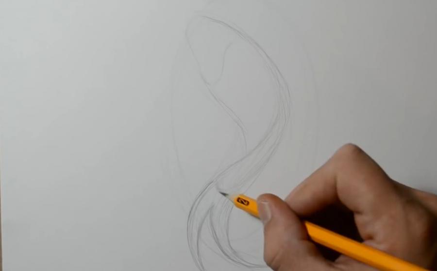 Рисуем татуировку рыбы - шаг 1